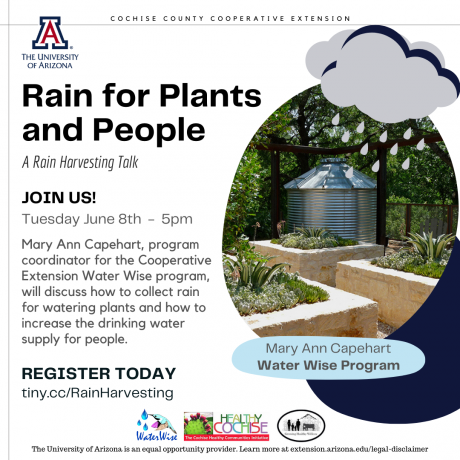 Rain for Plants and People